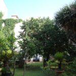 Le jardin Il Dammuso Sferracavallo chambres d'hotes