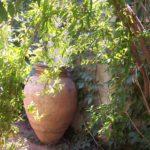 Le jardin du Dammuso Sferracavallo