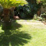 Il sole illumina in nostro giardino